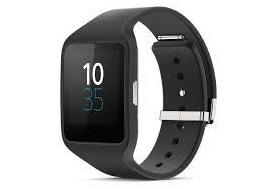 Sony_SmartWatch_3_SWR50[1]