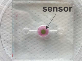 Photonic Biosensor