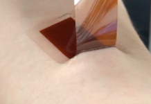Programmed silk wearables