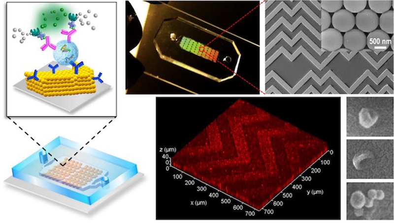 Microfluidic device for cancer