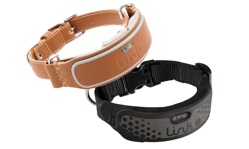 Dog wearable