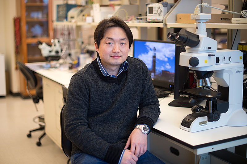 A researcher in his workplace